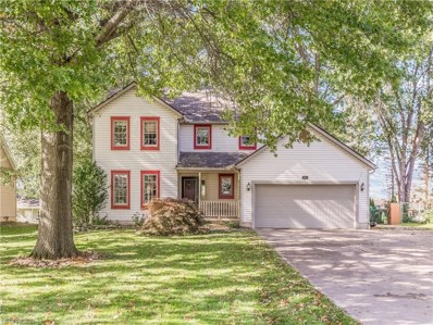 494 Trease Rd, Wadsworth, OH 44281 - MLS#: 4047853