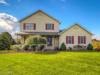 4251 W Cotton Candy Ct, New Middletown, OH 44442 - MLS#: 4047920