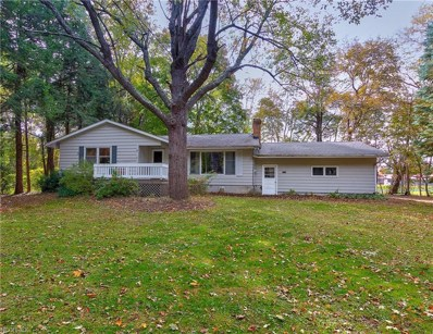 4724 Davis Rd, Perry, OH 44081 - MLS#: 4048004
