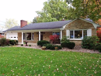 4671 Simon Rd, Youngstown, OH 44512 - MLS#: 4048189