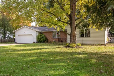 427 Cartwright Dr, Fairlawn, OH 44333 - MLS#: 4048958
