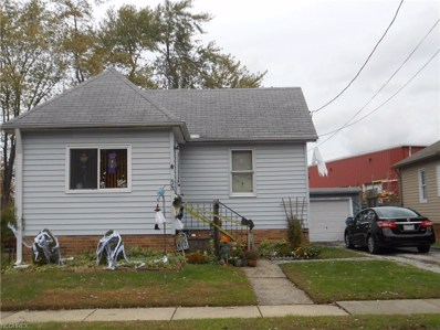 58 Frederick St, Painesville, OH 44077 - #: 4049279