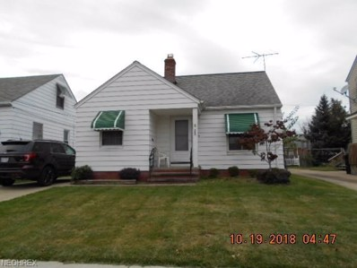 4256 W 56th St, Cleveland, OH 44144 - MLS#: 4049281