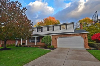 6743 Donna Rae Dr, Seven Hills, OH 44131 - MLS#: 4049418