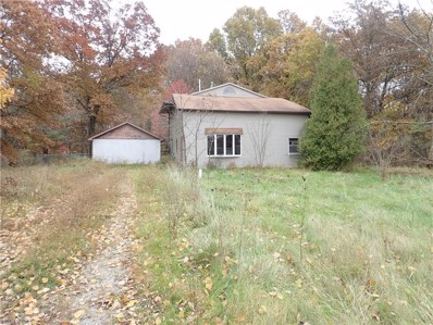 597 Mahoning Road, Lake Milton, OH 44429 - #: 4049559