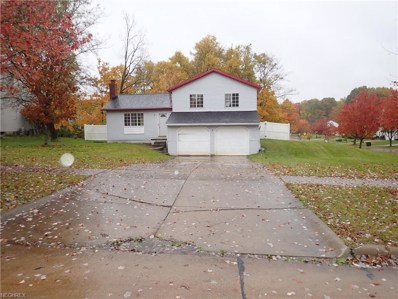 1101 Brookpoint Dr, Medina, OH 44256 - MLS#: 4049584