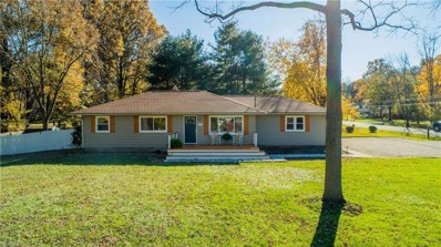 127 Van Evera Rd, Tallmadge, OH 44278 - MLS#: 4049609