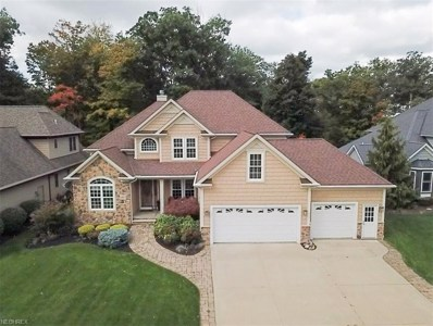 1185 Waterfront Pl, Painesville, OH 44077 - MLS#: 4049721