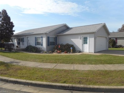 311 Galaxy Drive, Dover, OH 44622 - #: 4049834