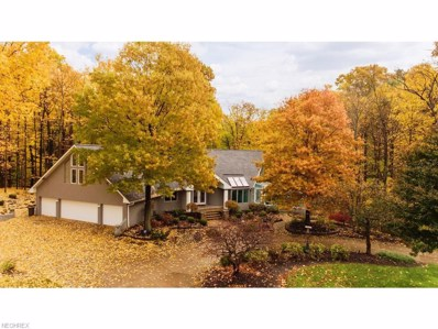 3583 Ira Rd, Akron, OH 44333 - MLS#: 4049900