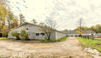 9251 Stafford Rd, Chagrin Falls, OH 44023 - MLS#: 4050017