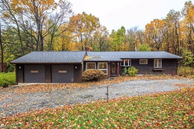 10240 Mayfield Rd, Chesterland, OH 44026 - MLS#: 4050069