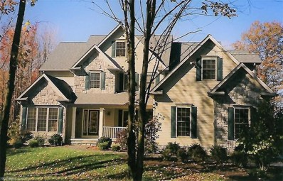 7220 Bridlewood Drive, Concord, OH 44077 - #: 4050076