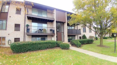 16375 Heather Ln UNIT T301, Middleburg Heights, OH 44130 - MLS#: 4050273