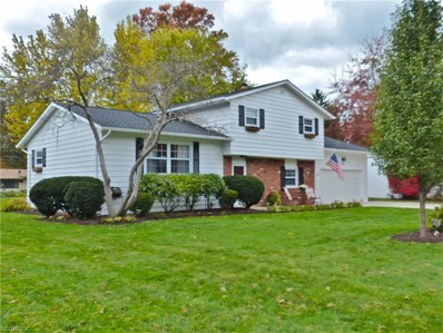 6138 Firwood Rd, Mentor, OH 44060 - MLS#: 4050445