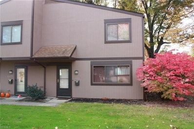 26675 Lake Of The Falls Blvd, Olmsted Falls, OH 44138 - #: 4050602