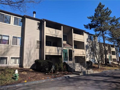 1680 Cedarwood Ln UNIT 343, Westlake, OH 44145 - MLS#: 4050631