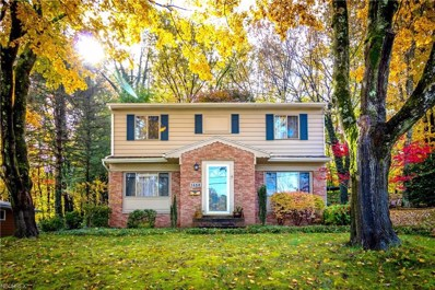 1438 Rowles Dr, Akron, OH 44313 - MLS#: 4050640