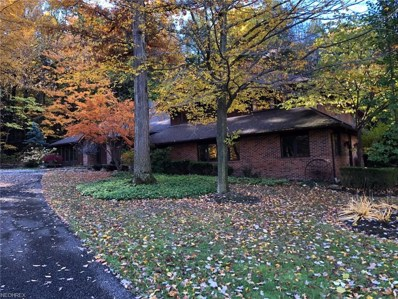 8262 Whitney Ln, Concord, OH 44077 - MLS#: 4050683