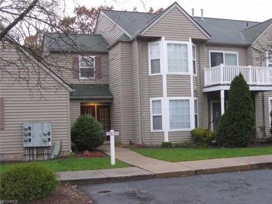 1005 Canyon View Rd UNIT D, Sagamore Hills, OH 44067 - #: 4050685