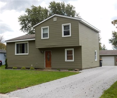 9858 Green Dr, Windham, OH 44288 - MLS#: 4050720
