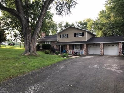 49280 Orchard Ln, East Liverpool, OH 43920 - MLS#: 4050819