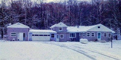 13583 Northwood Rd, Novelty, OH 44072 - MLS#: 4051405