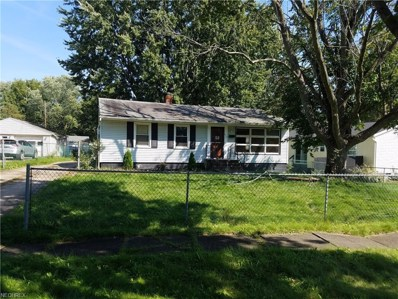 675 Frederick Blvd, Akron, OH 44320 - MLS#: 4051417
