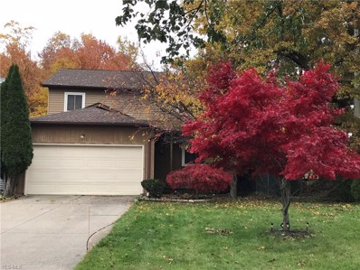 707 Anthony St, Richmond Heights, OH 44143 - MLS#: 4051545