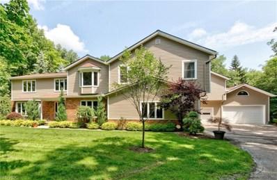 9590 Stafford Rd, Chagrin Falls, OH 44023 - MLS#: 4051611