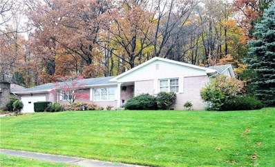 551 Reynolds Ave, Akron, OH 44313 - MLS#: 4052110