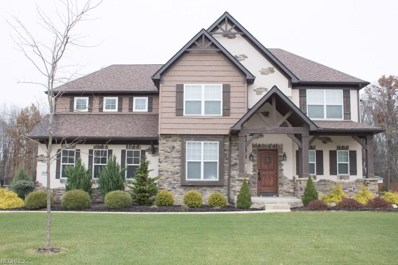 9681 Grand Oaks Trl, Olmsted Township, OH 44138 - MLS#: 4052227