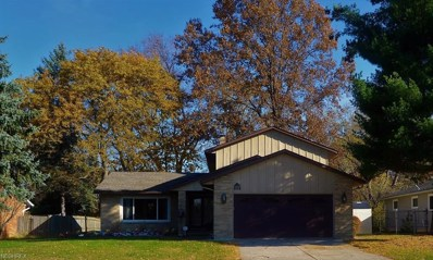505 Catlin Dr, Richmond Heights, OH 44143 - MLS#: 4052274