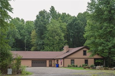 5151 Camp Road, Ravenna, OH 44266 - #: 4052365