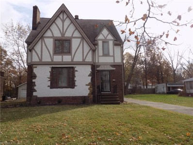 3876 Monticello Blvd, Cleveland Heights, OH 44121 - MLS#: 4052476