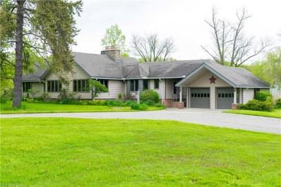 15113 Munn Rd, Newbury, OH 44065 - MLS#: 4052559