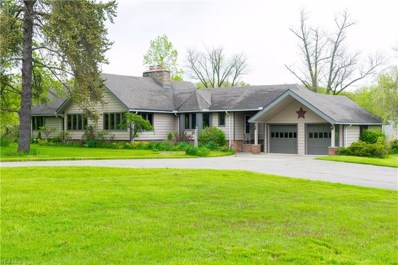 15113 Munn Road, Newbury, OH 44065 - #: 4052559