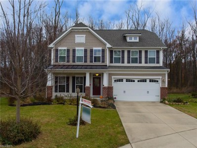 9011 Moss Pointe Cir, Olmsted Township, OH 44138 - MLS#: 4052749