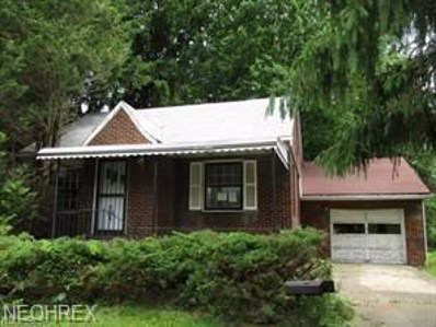 225 N Maryland Ave, Youngstown, OH 44509 - MLS#: 4052822