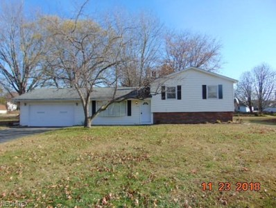 220 Mill Morr Dr, Painesville, OH 44077 - MLS#: 4052852
