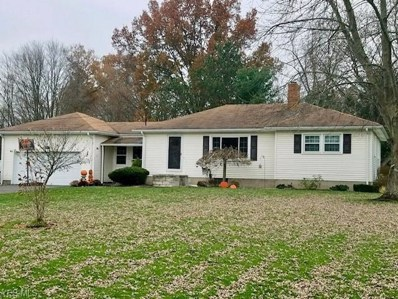 10975 Silica Rd, North Jackson, OH 44451 - MLS#: 4052872