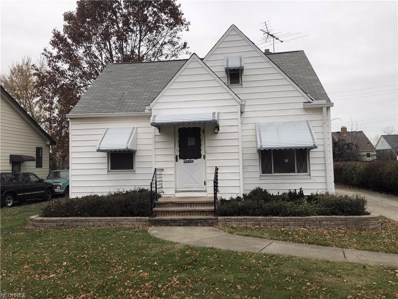 9909 Park Heights Ave, Garfield Heights, OH 44125 - MLS#: 4052887