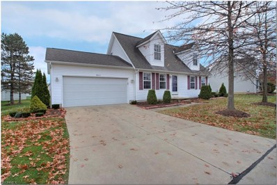 3865 Reeves Ln, Medina, OH 44256 - MLS#: 4052948