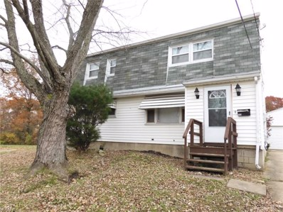 553 Moherman Ave, Youngstown, OH 44509 - MLS#: 4053689