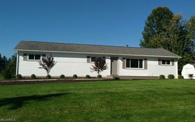 520 Meadow Dr, Wadsworth, OH 44281 - MLS#: 4053716