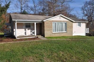 217 E Main St, Zanesville, OH 43701 - MLS#: 4053890