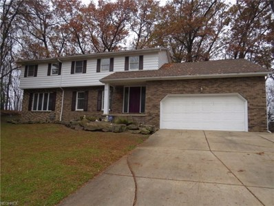 2014 Chestnut Hill Dr, Youngstown, OH 44511 - MLS#: 4053974