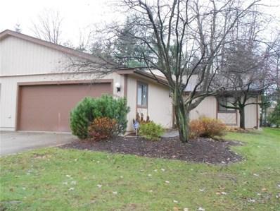 9998 Blossom Ln, Twinsburg, OH 44087 - MLS#: 4054282