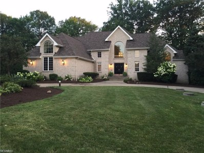 2864 Loreto Dr, Willoughby Hills, OH 44094 - MLS#: 4054543
