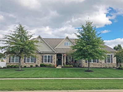 6811 Deer Tail Dr, Medina, OH 44256 - MLS#: 4054667